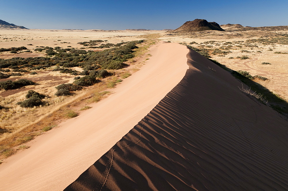 Sand dune, Huab River Valley, Torra Conservancy, Damaraland, Namibia, Africa