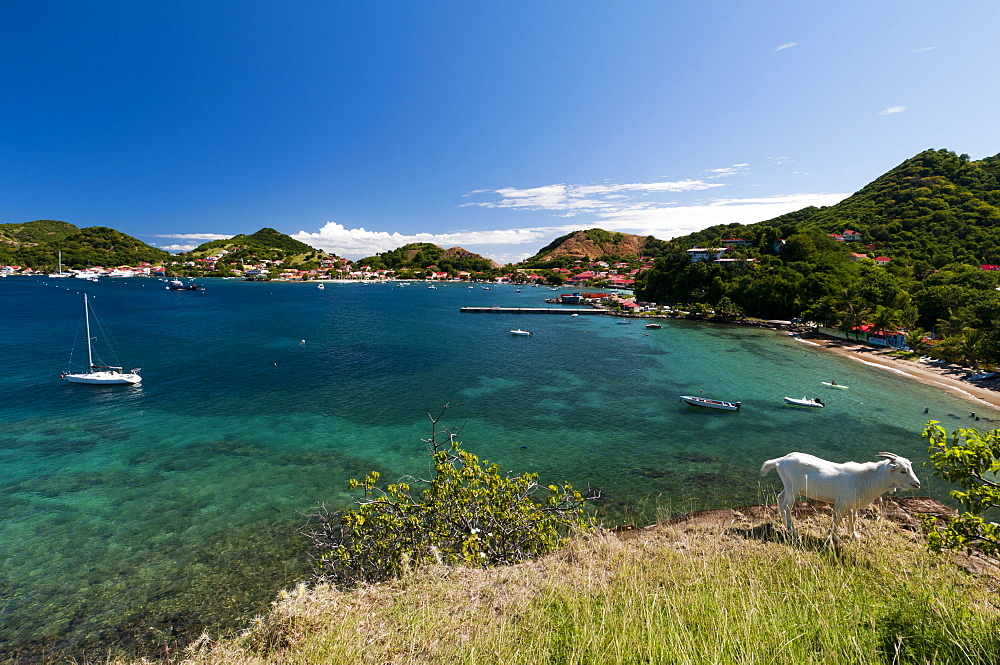 Le Bourg, Iles des Saintes, Terre de Haut, Guadeloupe, French Caribbean, France, West Indies, Central America