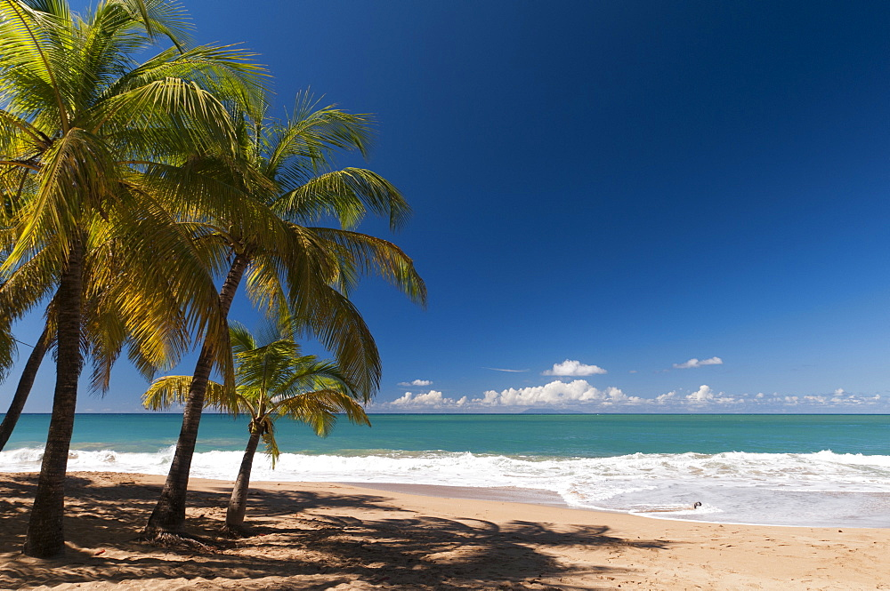 La Perle Beach, Deshaies, Basse-Terre, Guadeloupe, French Caribbean, France, West Indies, Central America
