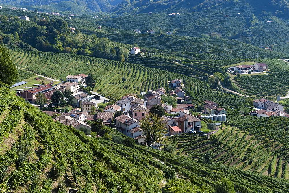 Valdobbiadene, Veneto, Italy, Europe