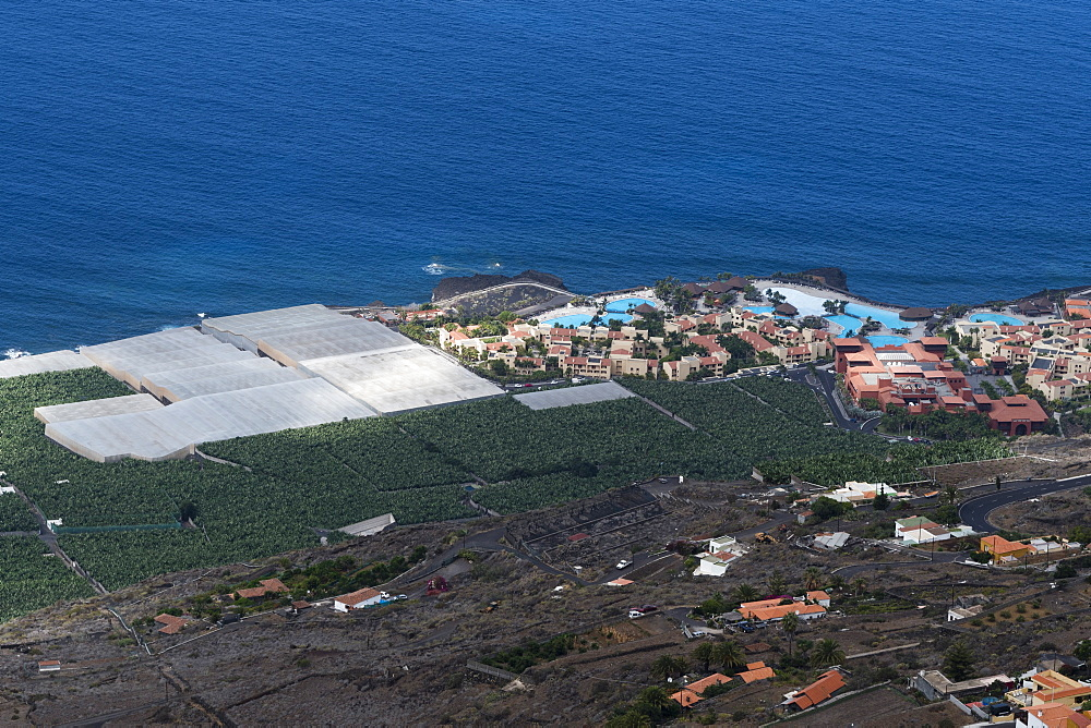 Banana plantations, El Remo, La Palma Island, Canary Islands, Spain. - 741-5196