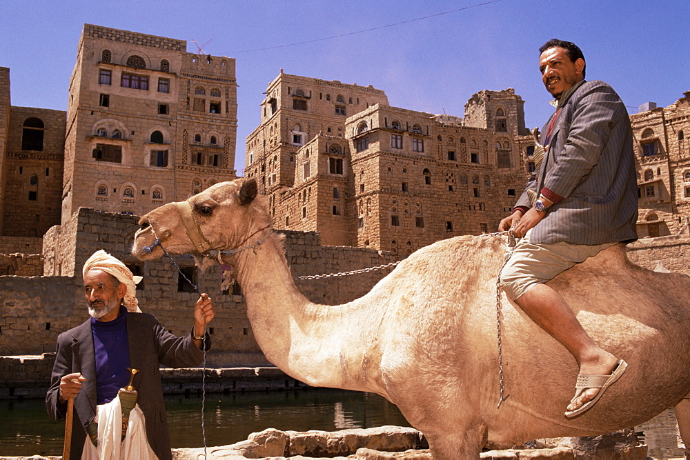 Men with camel, Hababa, Republic of Yemen, Middle East