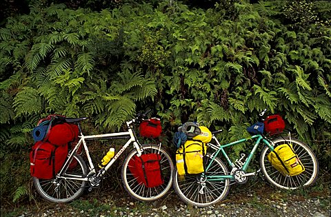 Bicycles in the wood, Biking around Italy
