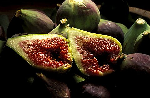 Ficus Carica, Figs, Italy