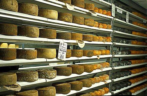 Pecorino, Guffanti cheese, Arona, Piedmont, Italy.
