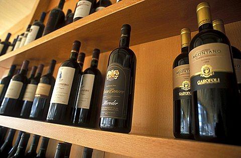 Il Saraghino restaurant, Marcelli, Marche, Italy