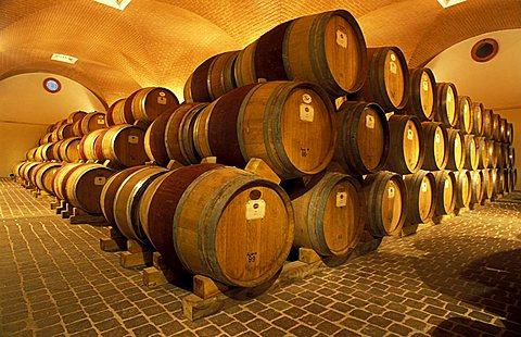 Maculan cellar, Breganze, Veneto, Italy