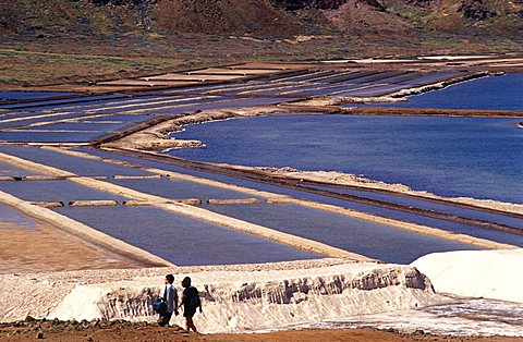 Salt ponds, Cape Verde Islands, Africa