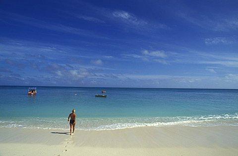 Promenade, Denis island, Seychelles, Indian Ocean, Africa