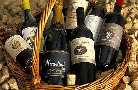 Bottles of wine, Fattoria di Montelloni cellar, Fucecchio, Tuscany, Italy