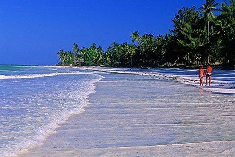 Beach, Zanzibar, Tanzania, East Africa, Africa