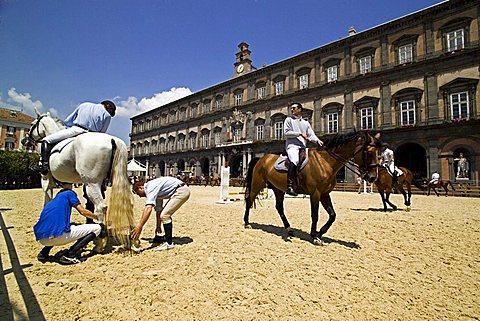 """Riding Show """"Piazza del Plebiscito"""", Naples, Campania, Italy"""