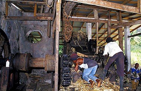 Rhum factory, Grenada island, Caribbean, Central America