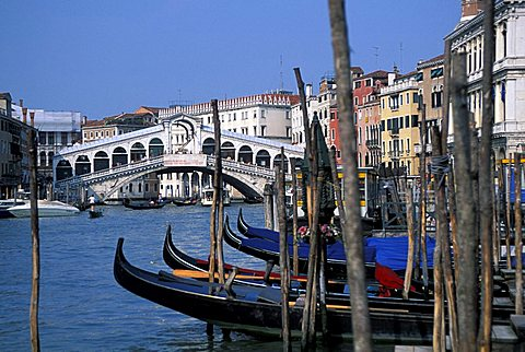 Rialto bridge, Venice, Veneto, Italy