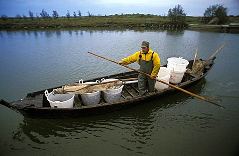 Fisherman, Comacchio, Emilia-Romagna, Italy