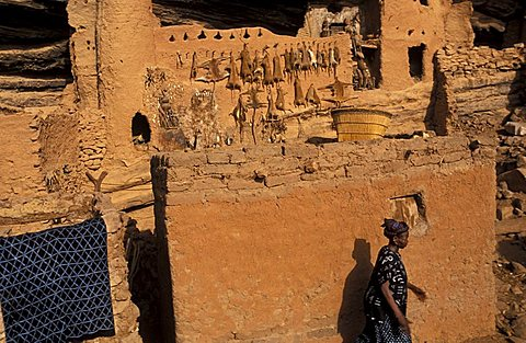 Dogon village of Goumoù, Republic of Mali, West Africa, Africa