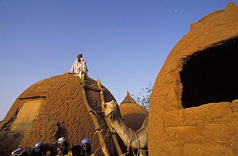 Huts made of earth, Republic of Niger, West Africa, Africa