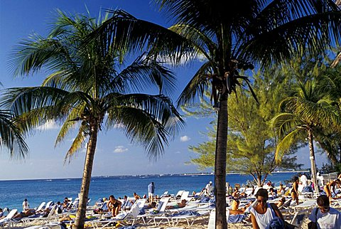 Beach, Grand Cayman island, Cayman Islands, West Indies, Central America