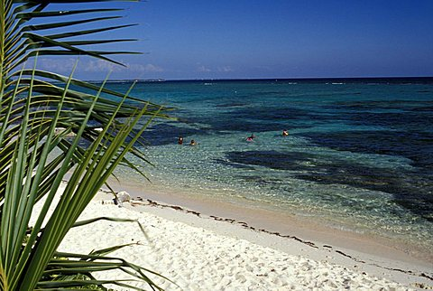 Beach bay, Bodden Town, Grand Cayman island, Cayman Islands, West Indies, Central America