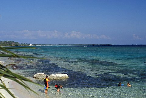 Bay, Grand Cayman island, Cayman Islands, West Indies, Central America