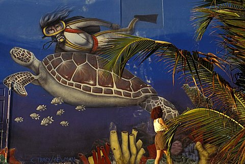 Mural, George Town, Grand Cayman island, Cayman Islands, West Indies, Central America