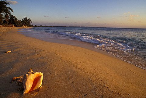Beach at dawn, Grand Cayman island, Cayman Islands, West Indies, Central America