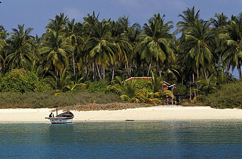 Parali 1 island, Laccadive islands, India, Asia