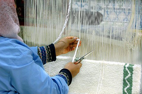 Weaver, Sidi Bou Said, Tunisia, North Africa, Africa