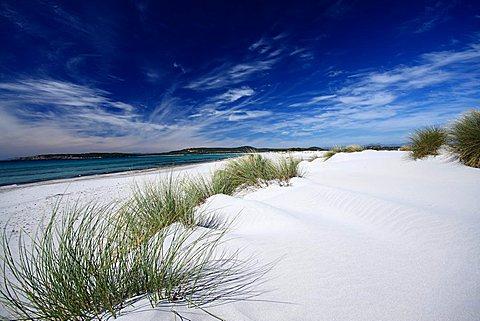 Dunes, Porto Pino, Teulada, Sardinia, Italy, Mediterranean, Europe