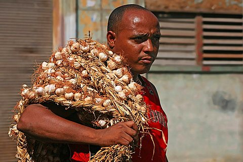 Garlic seller, Havana, Cuba, West Indies, Central America
