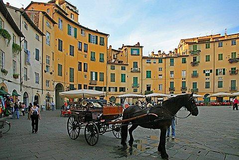 Piazza del Mercato, Lucca, Tuscany, Italy, Europe