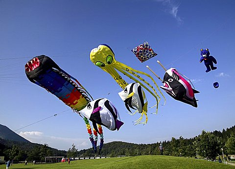 Kite international feast, Andalo, Trentino, Italy