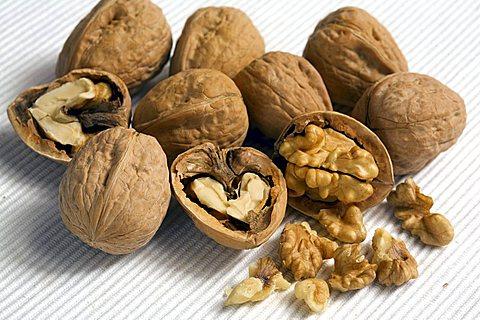Walnuts, Trentino Alto Adige, Italy