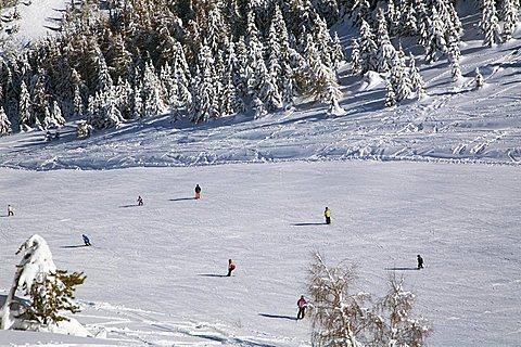 Bondone Mount, Trentino Alto Adige, Italy