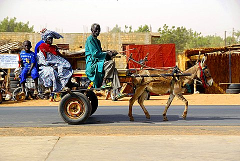 Taxi pulled by donkey, Republic of Senegal, Africa