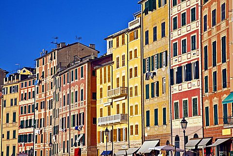 Typical houses, Camogli, Ligury, Italy