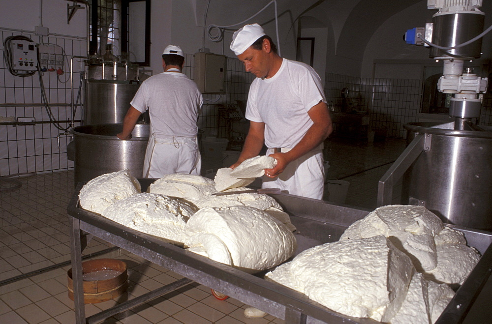 Preparation of the Mozzarella di Bufala, Piana del Sele, Campania, Italy