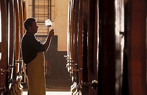 Winery of Brolio, Gaiole in Chianti, Tuscany, Italy