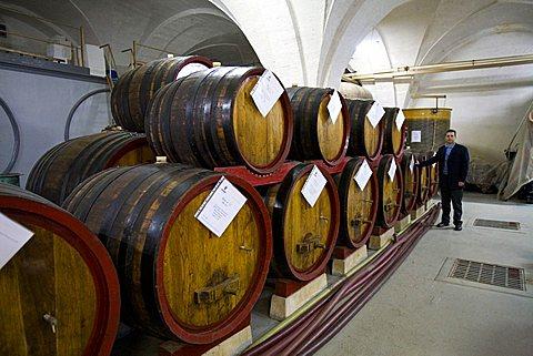 Barrel, Vinicola Resta wine factory, San Pietro Vernotico, Puglia, Italy