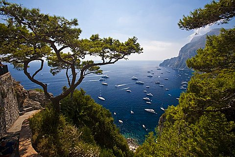 seaside, Capri Island, Naples, Campania, Italy, Europe