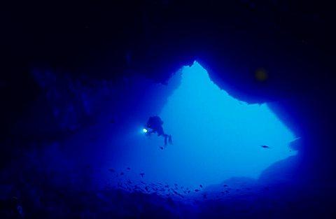 Underwater, Ustica, Ustica island, Sicily, Italy