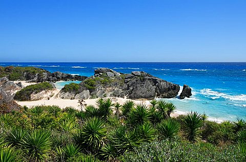 Horseshoe Bay, Bermuda, Atlantic Ocean, Central America