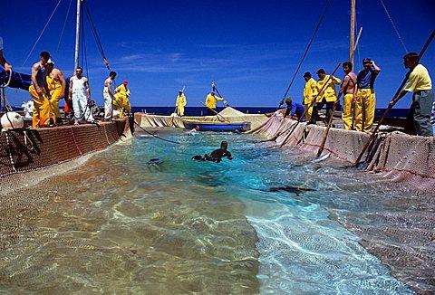Tunny-fishing nets, San Pietro, Sardinia, Italy