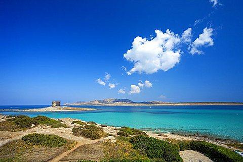 Pelosa beach, Stintino, Sardinia, Italy, Europe