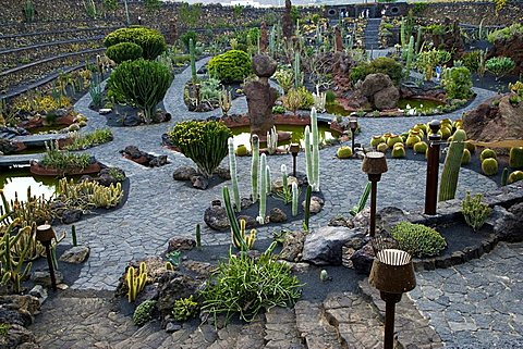 Cactus garden desgned by Cesar Manrique, Guatiza, Lanzarote, Canary Islands, Spain