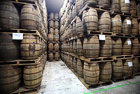 Lannion, whiskey factory, Roscoff, Finistère department , Bretagne, France, Europe