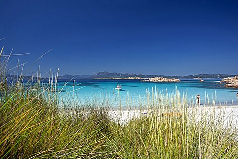 Isola di Mortorio island, Maddalena archipelago National Park, La Maddalena, Arzachena, Sardinia, Italy, Europe