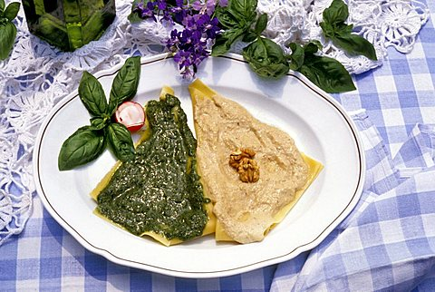 Pasta with pesto sauce and walnut sauce, Ligury, Italy
