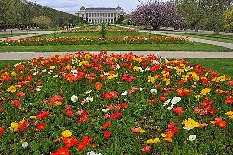 Jardin des Plantes botanical garden, Paris, Ile-de-France, France, Europe