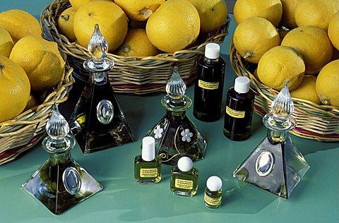 S.Gregorio, Reggio Calabria, bergamot oil